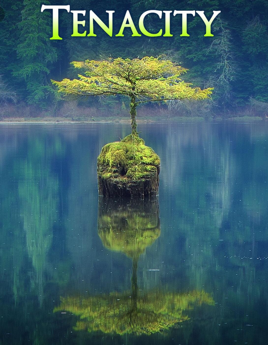 Tenacity = Strength of Purpose